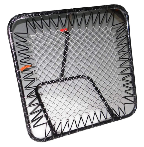 Cricket Rebound Net