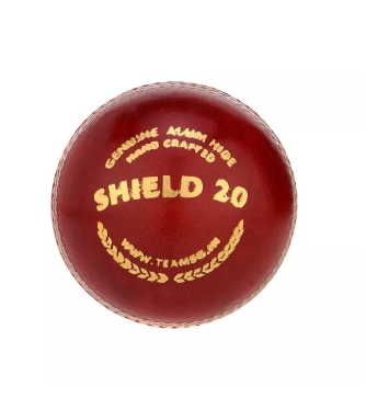 SG Club™ Cricket Ball-SG - NFSporTech
