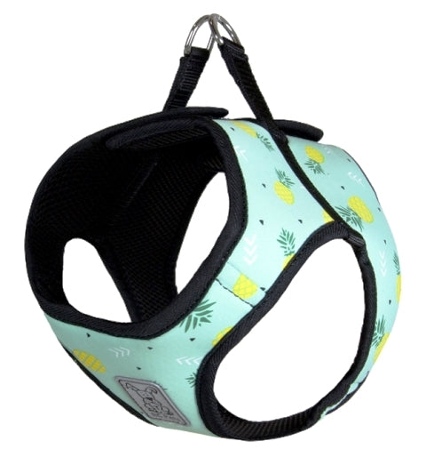 RC Pet Step-In Cirque Dog Harness - Pineapple Parade