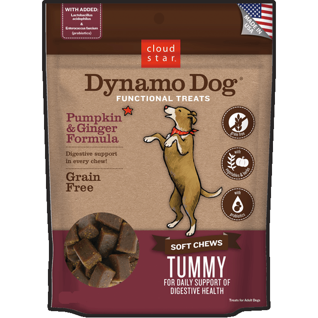 Cloud Star Dynamo Dog Tummy Soft Chews with Pumpkin & Ginger - 14 oz.