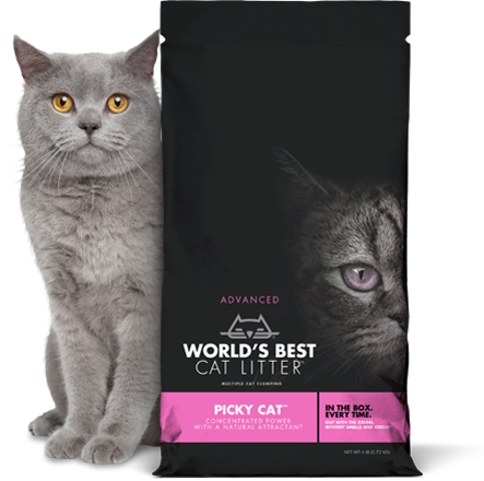 World's Best Picky Cat Litter