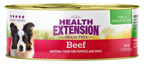 Health Extension Holistic Beef Canned Dog Food - 5.5 oz.