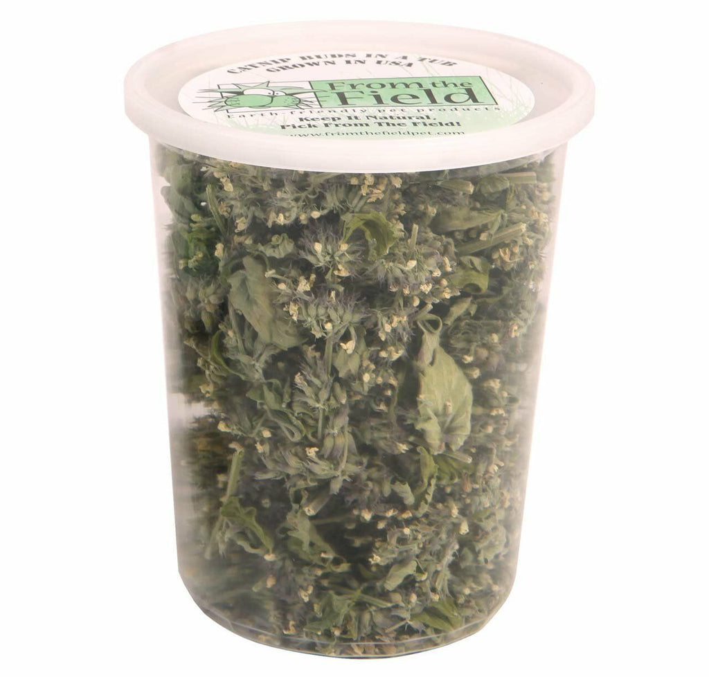 From the Field Catnip Buds in a Tub -1.0 oz.