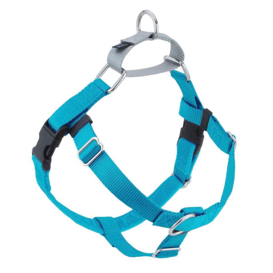 2 Hounds Design Freedom No-Pull Dog Harness - Turquoise