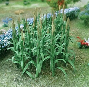 "MP Scenery Products 70101 - HO Scale - Corn Stalks 1"" Height 32/pk"