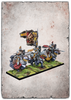 Conquest - PBW8224 - The Hundred Kingdoms - Household Knights