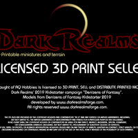 Dark Realms - Multi-Race Towns Folk - DR011 Series - Round Table  Set