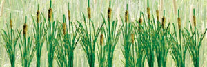 "JTT Scenery Products 95536 - O Scale - Cattails, 1-1/2"", 24/pk"