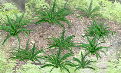"JTT Scenery Products 95533 - HO Scale - Fern Plants 5/8"" 12/pk"