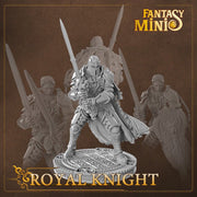 Fantasy Minis - FM04 - Royal Knight 28mm