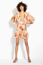 Ruffle Mini Dress - Powder Multi