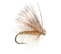 Umpqua Elk Hair Caddis
