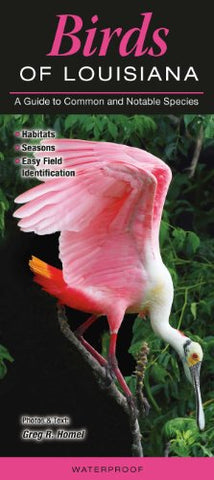 Birds Of Louisiana: A Guide To Common & Notable Species