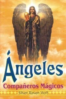 Angeles Companeros Magicos/ Angels Magic Fellow (Spanish Edition)