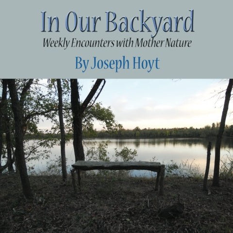 In Our Backyard: Weekly Encounters With Nature