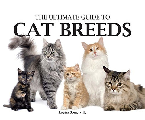 Ultimate Guide To Cat Breeds (Paperback Chunkies)
