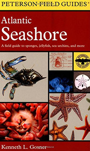 A Field Guide To The Atlantic Seashore: From The Bay Of Fundy To Cape Hatteras (Peterson Field Guides)