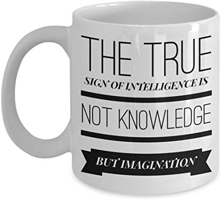 Albert Einstein Gift 11 oz - The true sign of intelligence is not knowledge but imagination