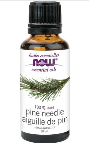 Now Pine Needle