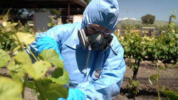 Pesticides Safety Training - Training Network