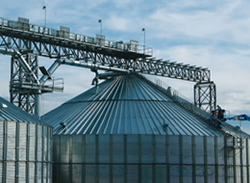 Grain Elevator Fall Protection