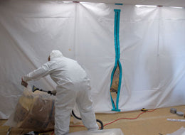 Toxic Mold - The Facts - Training Network