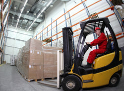 Forklift Safety - The Professional Operator - Training Network