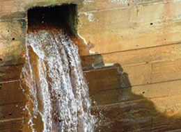 Understanding Your Facility's Stormwater Pollution Prevention Plan - Concise - Training Network