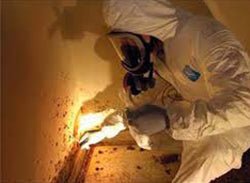 Lead Exposure in Construction Environments - Training Network