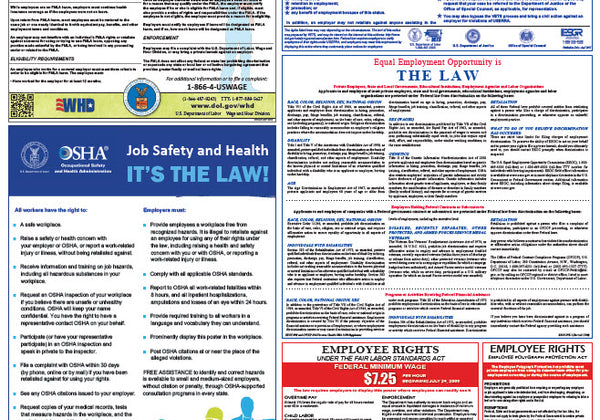 Federal & State Labor Law Poster - Training Network