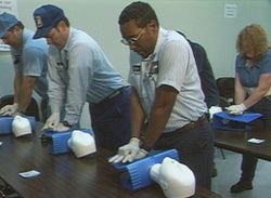 Emergency First Aid - Training Network