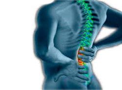 To The Point About: Preventing Back Injuries - Training Network