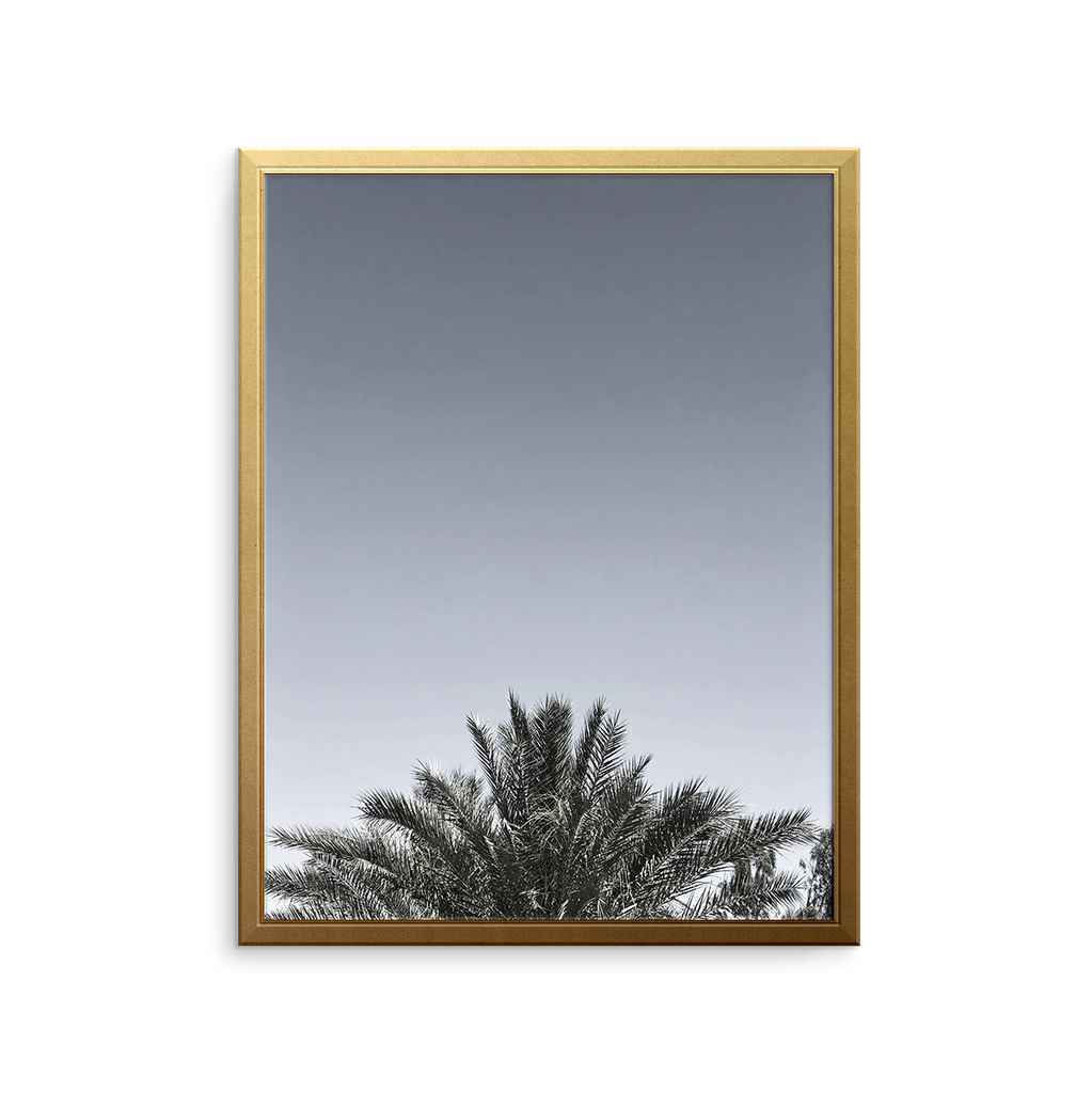 DESERT PALM Art Print