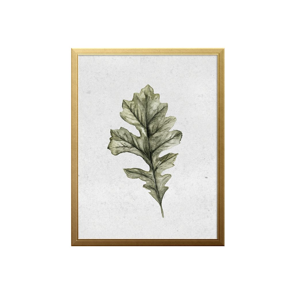 Oak Leaf Art Print