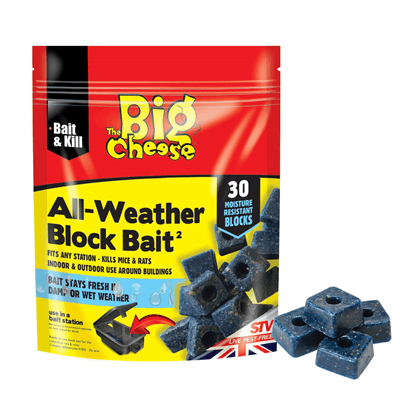 Big Cheese All-Weather Block Bait 30 x 10g