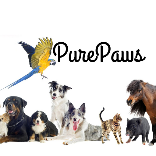 PurePaws.Co Website - purepawsco