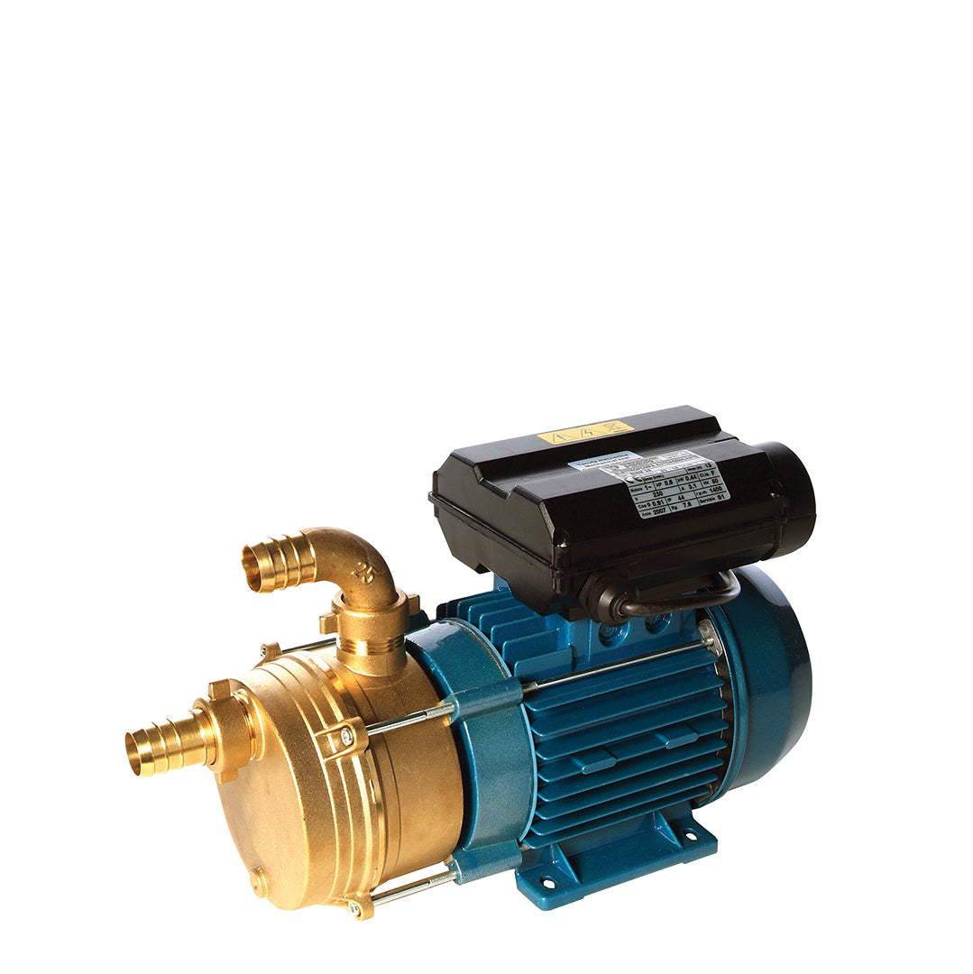 ENM bronze body Speroni Industrial Surface Pump
