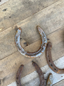 Used Horseshoe, Lucky Horse Shoe