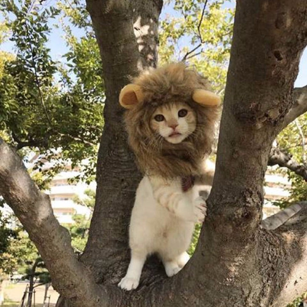 Cute Pet Cap Cosplay Costume Lion Shape Hat Doggy Kitty Lion Mane Hat Comfortable Cat Hat Soft Puppy Wig Breathable Animal Cap