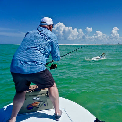 Tarpon Season Is Upon Us