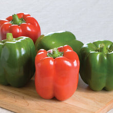 Load image into Gallery viewer, Bell pepper-3 varieties -6 plants-May