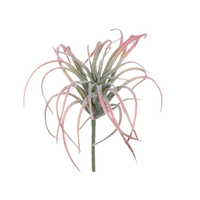Artificial Air Plant