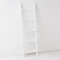 Asterix 5 Ladder Gables & Shelves
