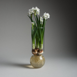 Recycled Glass Bulb Vase