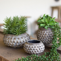 Ceramic Dotted Planter