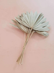 Sun  Cut Dried Natural Palm Bunch