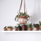 Painted Terracotta Planter w/ Leather Hanger