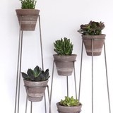 Set of Clay Pots on Wire Bases