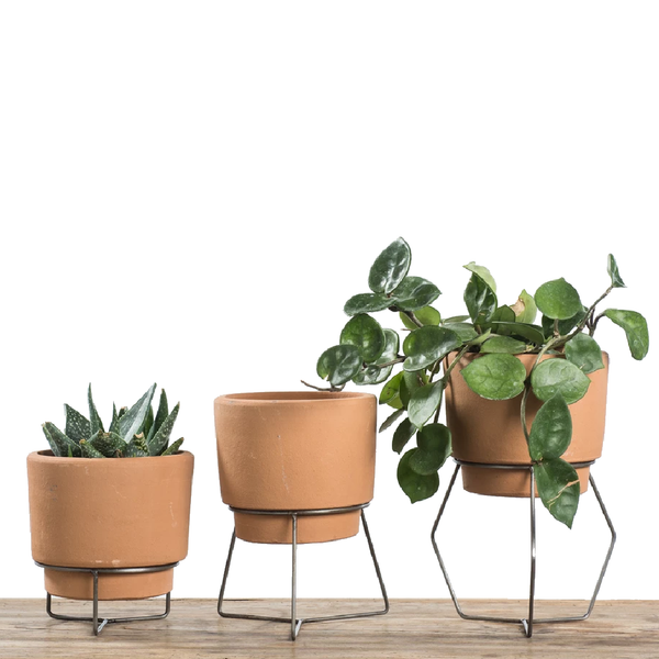 Natural Terracotta Planters On Metal Bases
