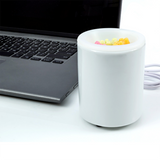 Mini USB Wax Warmer